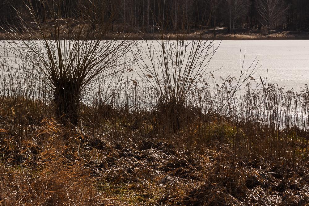 zalew Czapielówka
