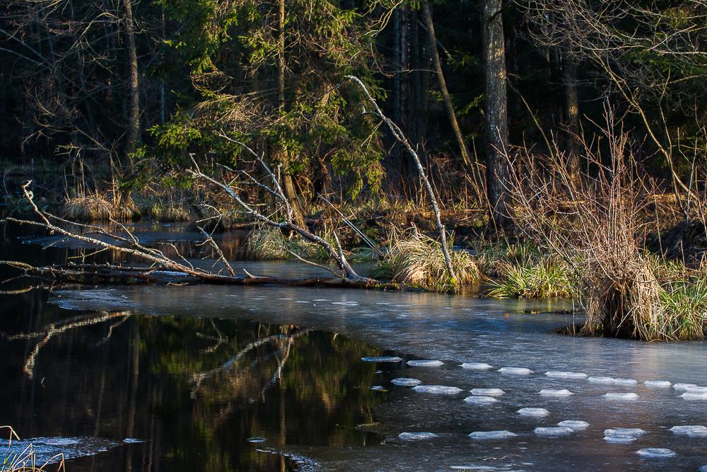zalew Czapielowka