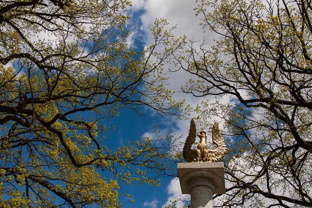 cmentarz powstańców 1831 r. w Kopnej Górze