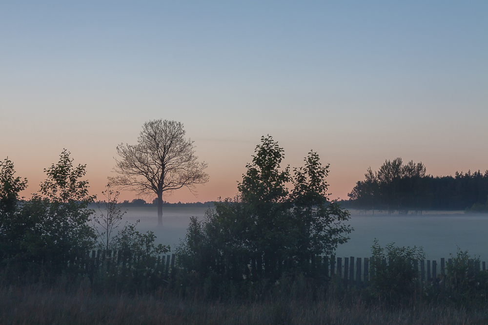 mgły lipiec