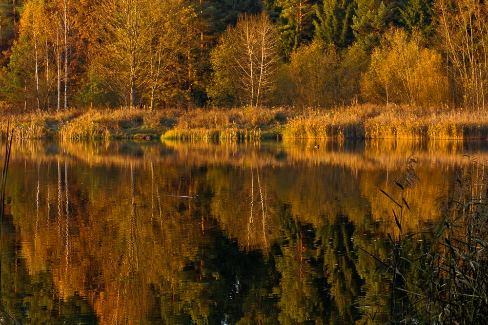 złota jesień, zalew Czapielowka