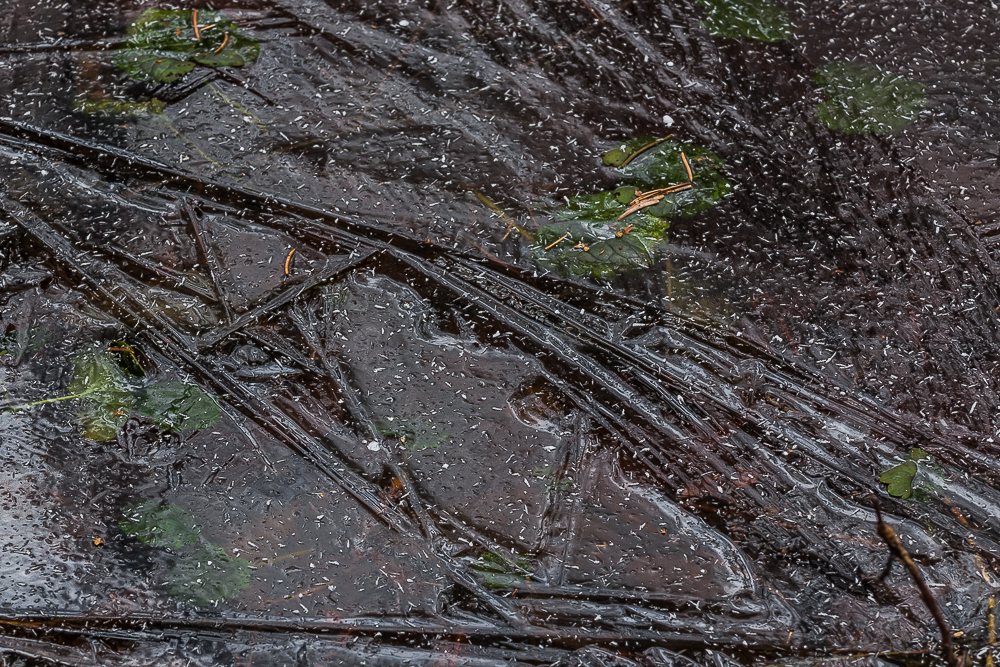 wzory lodowe