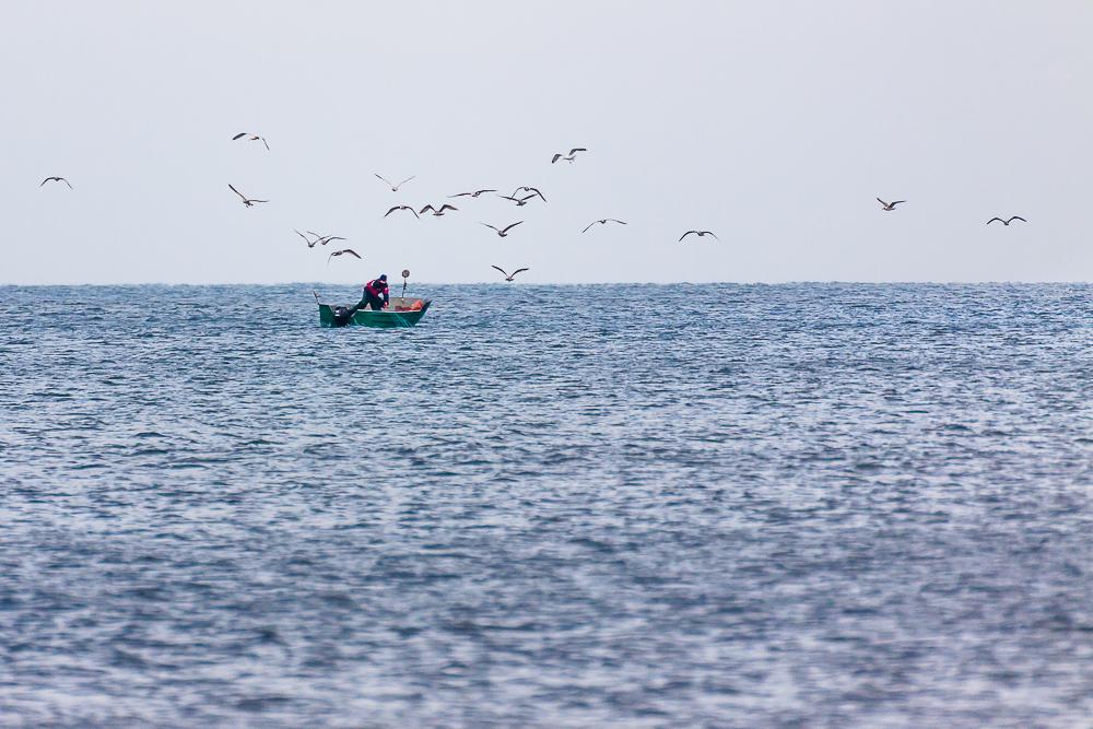 połów ryb na Bałtyku