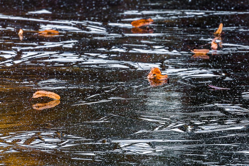 zamarznięty zalew Czapielówka