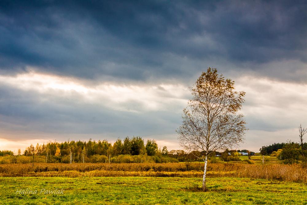 jesienne niebo, jesień