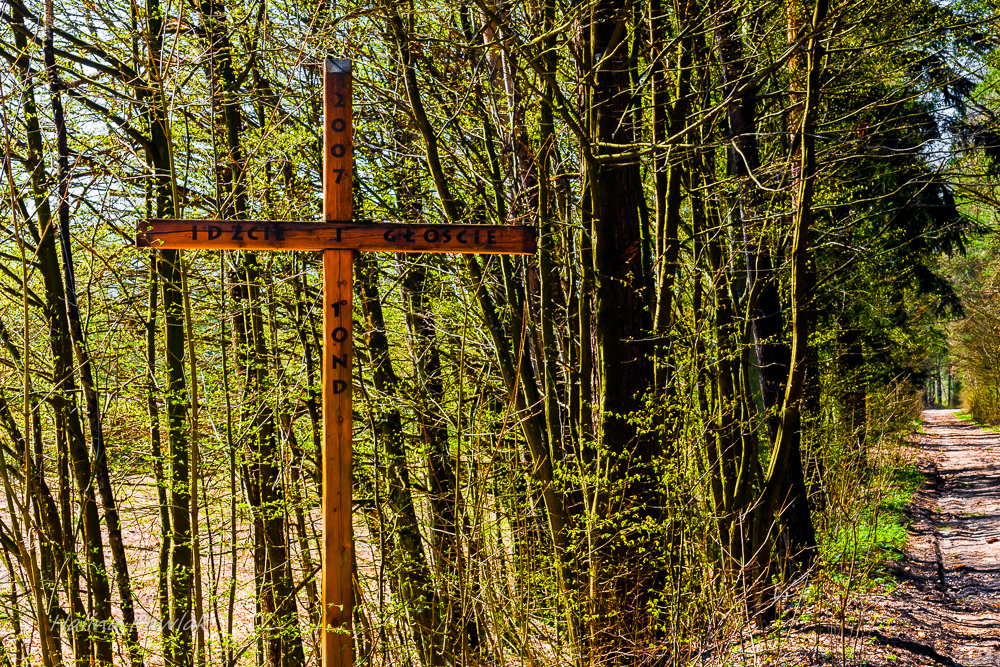krzyże Podlasia